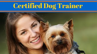How To Become A Certified Dog Trainer - Work With Animals