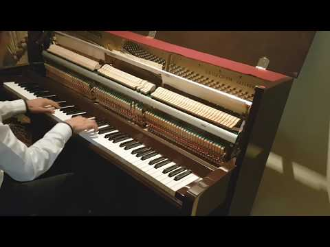 Luis Fonsi ft. Daddy Yankee - Despacito Piano Cover by Nintednic13