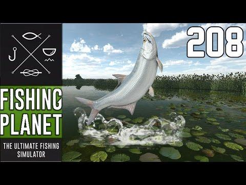 FISHING PLANET #208 - TARPUN IN FLORIDA! - OPEN BETA! 🎣  || Let's Play Fishing Planet