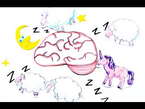 Научпок - Осознанные сновидения