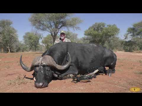 Bowhunting in South Africa – Olsen's bowhunt buffalo, roan and kudu