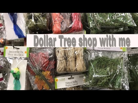 Quick Dollar Tree Shop with me