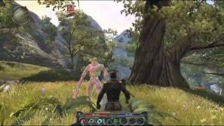 Divinity 2 gameplay