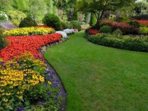 Lawn service elmwood park nj landscaping maintenance for Affordable garden services