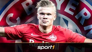 Wie Bayerns Haaland-Transfer gleich mehrmals scheiterte | SPORT1 - TRANSFERMARKT