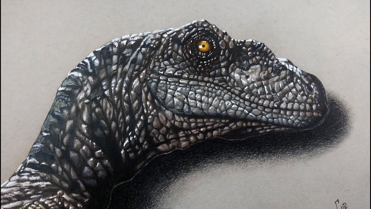 Drawing Velociraptor - Jurassic world | Realistic Drawing ...