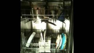 Bocsh Dishwasher repair Los Angeles 800-315-9134