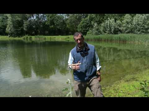 Tackle On Test - Sage Dart Fly Rod