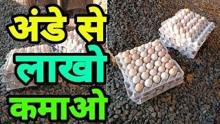 अंडे से लाखो कमाओ   Earn millions of eggs