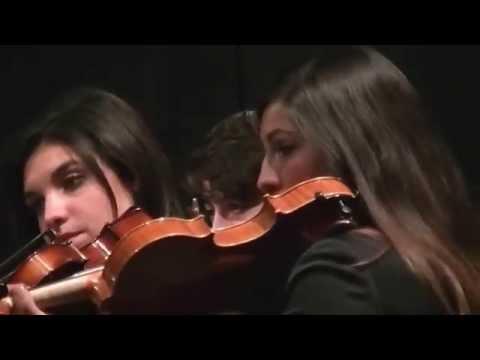 Orchestra del Conservatorio di Salerno Concerto per la Palestina
