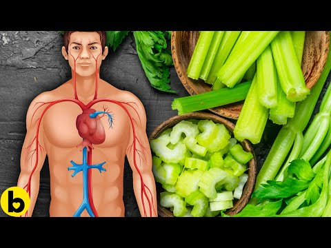 6 Celery Benefits For Men You Need To Know About