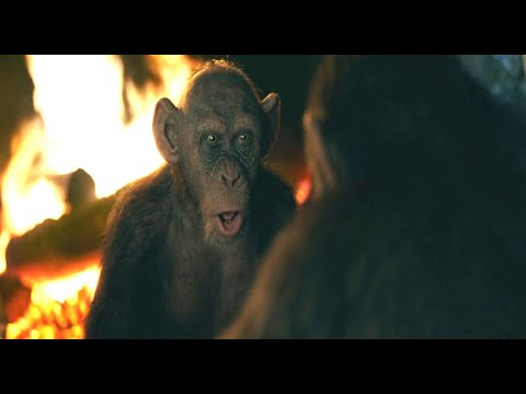 """Bad Ape Tell Caesar About """"Human Zoo"""" Deserted Military Camp 