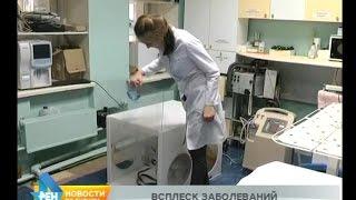 Случаи ухудшения состояния животных из-за дыма всё чаще фиксируют в Усть-Илимске