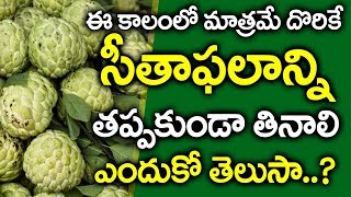 సీతాఫలం ఉపయేగాలు I Sitafal Health Benefits in Telugu I Custard Apple Telugu I Everything in Telugu