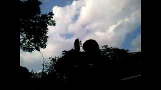 Giấc mơ trưa - Sáo C ft. Guitar