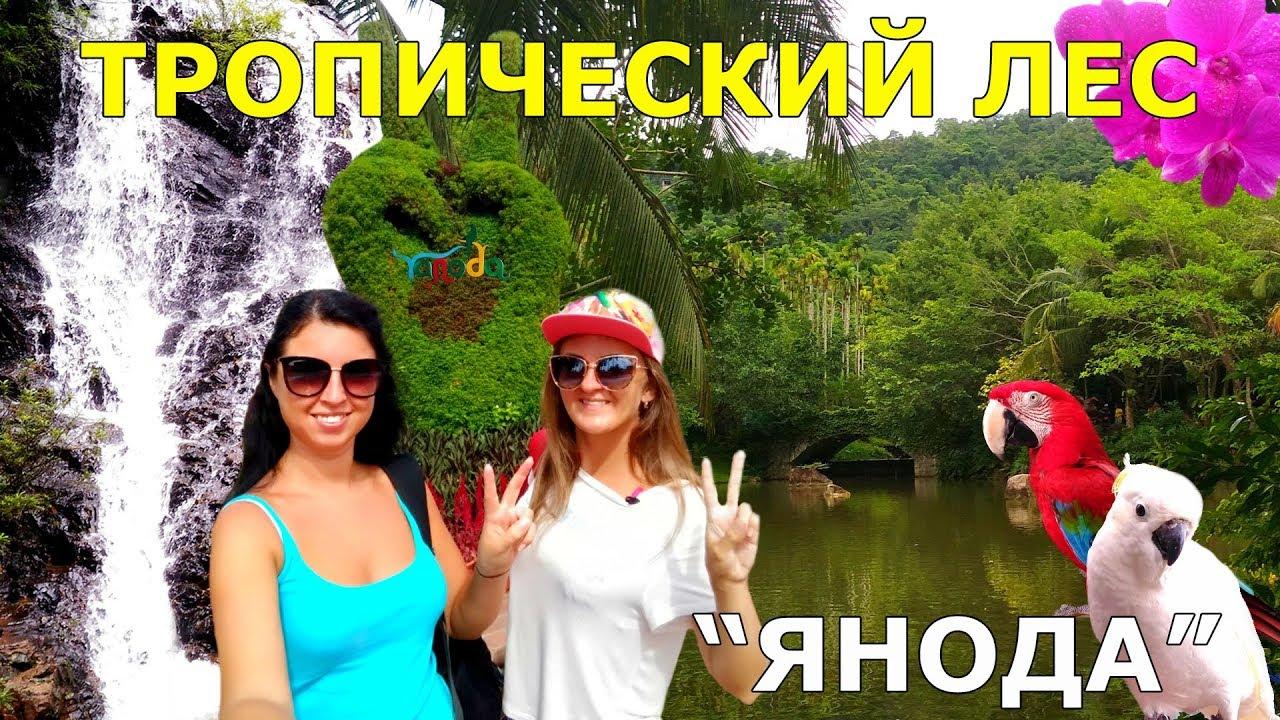 Экскурсия в Янода, видео