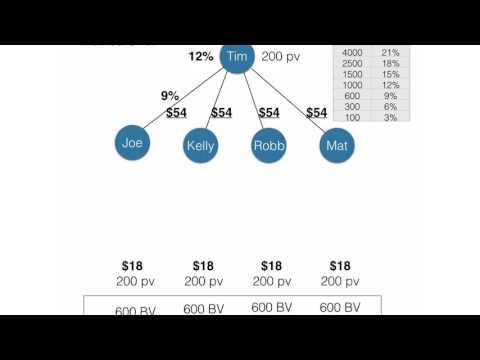 Amway Comp Plan Breakdown
