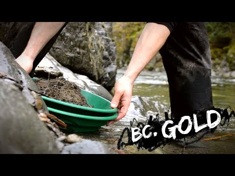 Gold Panning In British Columbia!