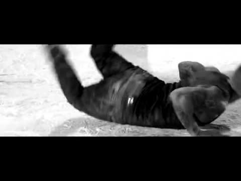 Alex Velea - Cand noaptea vine | Lyrics | Versuri