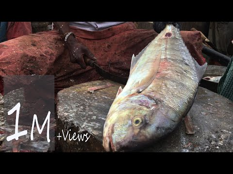 Amazing Indian Fish Cutters@Kasimedu Market | Indian Fish Market | Sunday Special