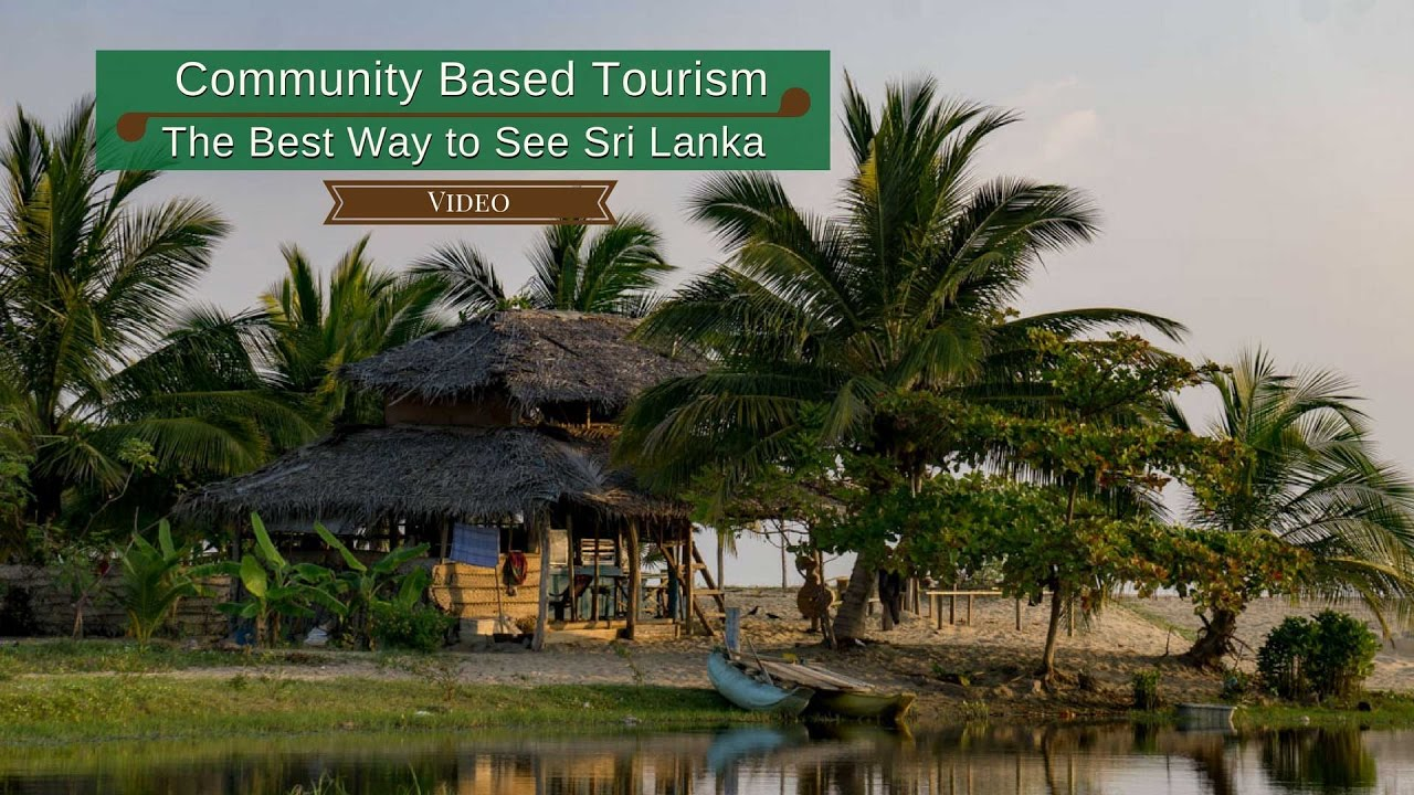 marien life tourism in sri lanka Sri lanka were active participants at the united nations conference to noted the contributions made by sri lanka in preserving marine life and the from tourism the department has introduced regulations for marine.