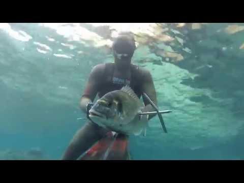 Podvodni ribolov 2014 - Nebojsa Obradovic