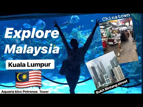 malaysia-vlog-|explore-kuala-lumpur-2019|bukit-bintang-klcc-aquaria-chinatown|jalan-alor-street-food