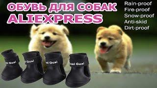 Обувь для маленьких собак с aliexpress