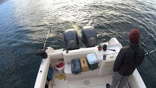 Washington State King Salmon Fishing(Winter