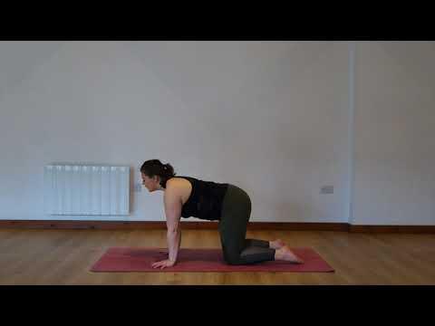 Yoga Osteo Lower Back Stretch