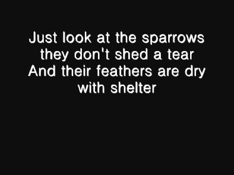 """Sparrows"" - Original by Dolly Spice"