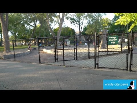 Portage Park Dog Friendly Area - Chicago Dog Park