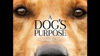 Собачья жизнь. Жизнь и цель собаки A Dogs Purpose 2017 трейлер HD