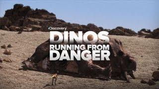 Dinosaurs Running From Danger!