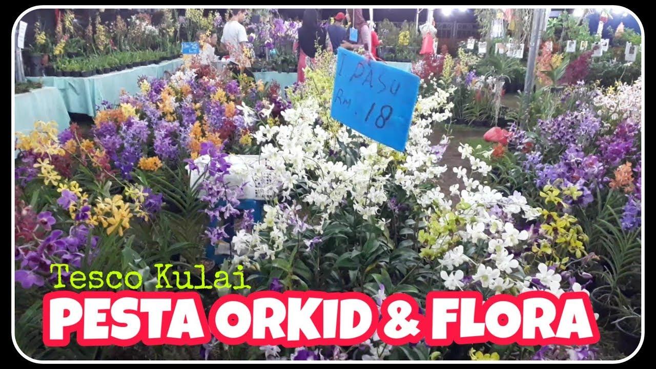 Pesta Orkid Flora Tesco Kulai Youtube
