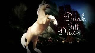 Dusk Till Dawn /sso/