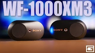 Almost Perfect : Sony WF-1000XM3 True Wireless REVIEW