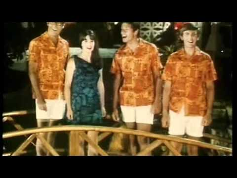 The Seekers  Isa Lei Stereo 1967