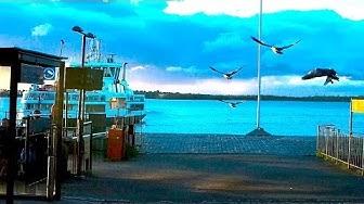 Midsummer (Juhannus) in Suomenlinna