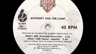 Anthony And The Camp - What I Like (Extended Dance Mix)