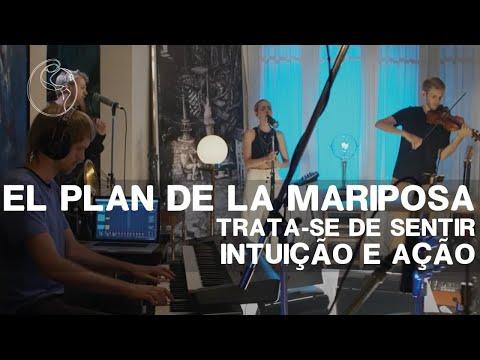 El plan de la Mariposa: El Riesgo + Oro de Abeja — II FJP online - 31/01/21