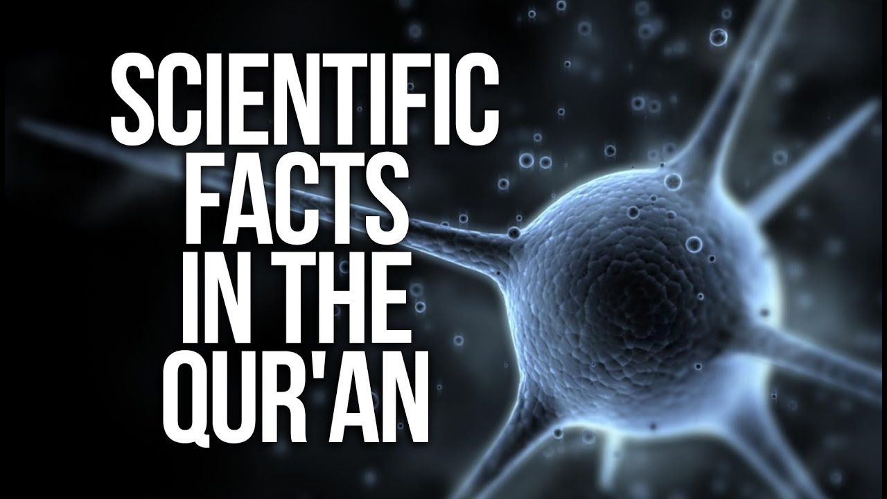 quran and science The sleep has been long and deep in 2005 harvard university produced more scientific papers than 17 arabic-speaking countries combined the world's 16 billion.