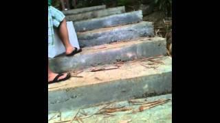 Roxas,Zamboanga del norte getaway