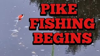Pike Fishing With Dead Baits On The River