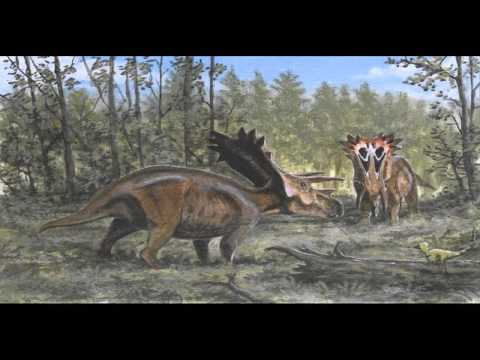 Mid sized Ceratopsian Sound Effects