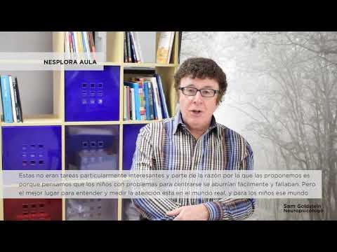 Sam Goldstein y Nesplora Aula - Nesplora Technology & Behavior
