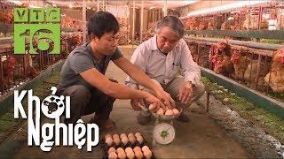"""Nuôi gà đẻ trứng: Gà """"đẻ"""" ra hàng trăm triệu - Khởi nghiệp 426   VTC16"""