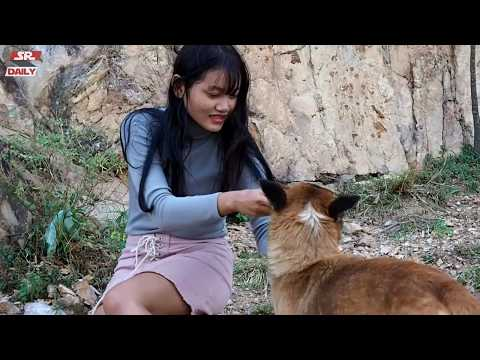 Cute Girl Giving Food To Malinois Dog - Amazing Smart Dog Playing With a Girl on The Mountain