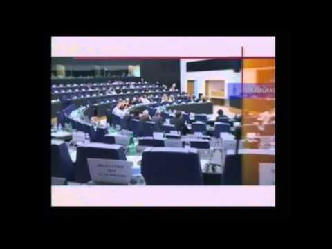 """Nacionalinė pamoka """"Europos Parlamentas: veikla, atstovai, galimybės"""""""