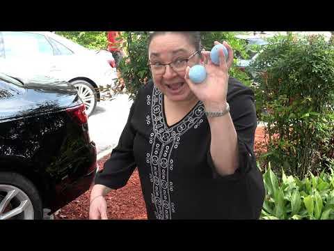 Surprise Easter Egg Hunt At Audi Coral Springs - Employee Appreciation!
